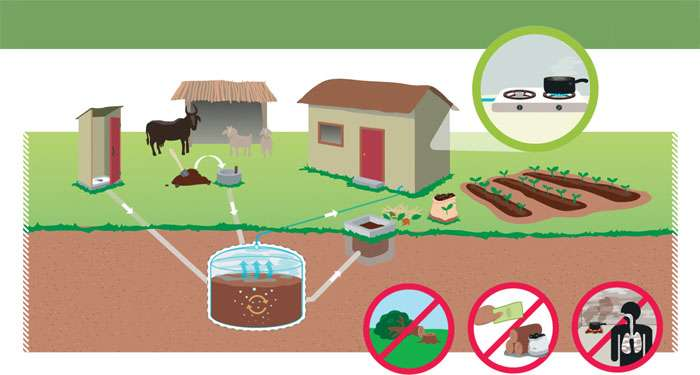 Biogas Plants : A Real Alternative