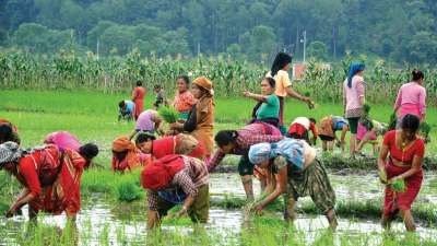 CSA : Milestone for Smallholders and Returning Migrants
