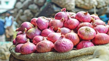 Market Monitoring Brings Down Soaring  Price of Onion